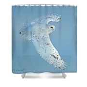 Snowy Against Blue Sky Shower Curtain