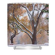 Snowy Autumn Landscape Shower Curtain by James BO  Insogna