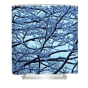 Snowy Branches Landscape Photograph Shower Curtain