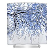 Snowy Branches Shower Curtain