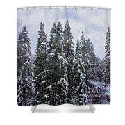 Snowy Christmas At Big Bear Lake Shower Curtain