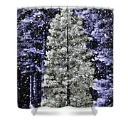 Snowy Day Pine Tree Shower Curtain