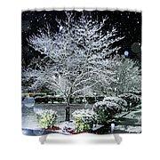 Snowy Dogwood Tree At Night Shower Curtain