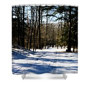 Snowy Drive Shower Curtain