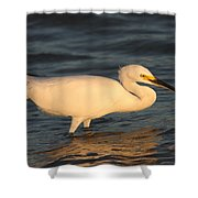 Snowy Egret By Sunset Shower Curtain