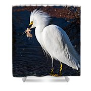 Snowy Egret Eating Fish Shower Curtain