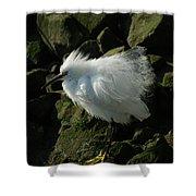 Snowy Egret Fluffy Shower Curtain