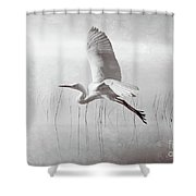Snowy Egret Morning Bw Shower Curtain