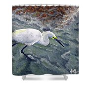 Snowy Egret Near Jetty Rock Shower Curtain