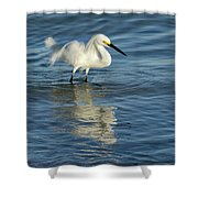 Snowy Egret On The Hunt II Shower Curtain