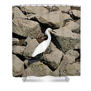 Snowy Egret On The Rocks Shower Curtain