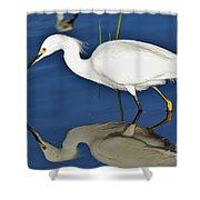 Snowy Egret Reflection Shower Curtain