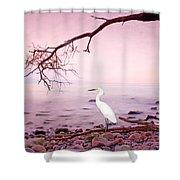 Snowy Egret Solitude Shower Curtain