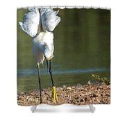 Snowy Egret Stretch 4280-080917-3cr Shower Curtain