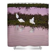 Snowy Egrets At Sunset Shower Curtain