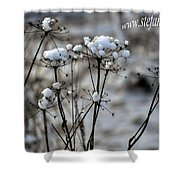 Snowy Flowers  Shower Curtain