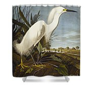 Snowy Heron Shower Curtain