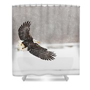 Snowy Landing Shower Curtain