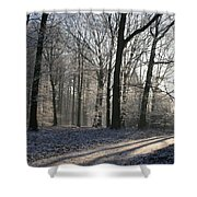 Mystical Winter Landscape Shower Curtain
