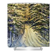 Snowy Lane Shower Curtain