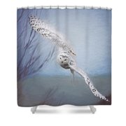 Snowy Owl In Flight Painting 2 Shower Curtain