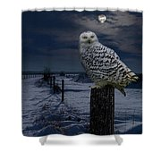 Snowy Owl On A Winter Night Shower Curtain