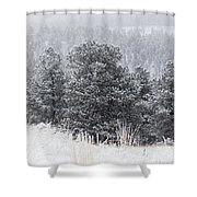 Snowy Pines In The Pike National Forest Shower Curtain