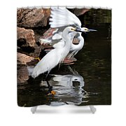 Snowy Reflections Shower Curtain
