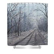 Snowy Road At Dawn  Shower Curtain