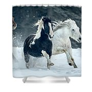 Snowy Run Shower Curtain