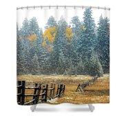 Snowy Silence Shower Curtain