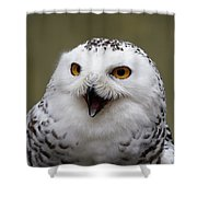 Snowy Sings Shower Curtain