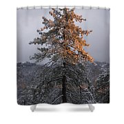 Snowy Sunset Shower Curtain