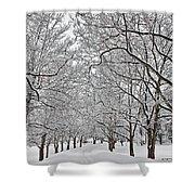 Snowy Treeline Shower Curtain
