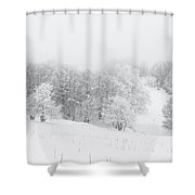 Snowy Trees - 4 Shower Curtain