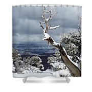 Snowy View Shower Curtain