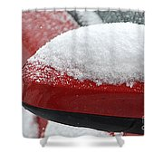 Snowy Wing Mirror Shower Curtain