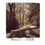 Snowy Woodland Walk One Shower Curtain