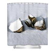 Snowy Zen Shower Curtain