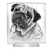 Snuggly Puggly Shower Curtain