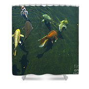 So Koi Shower Curtain