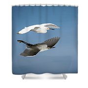 Soaring Over Still Waters Shower Curtain