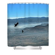Soaring Ravens Shower Curtain