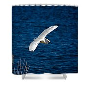 Soaring Snowy Egret  Shower Curtain