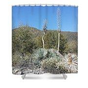 Socal Yucca Shower Curtain