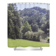Soft Afternoon Shower Curtain