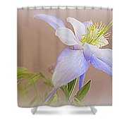 Soft And Lovely Columbine Flower Shower Curtain