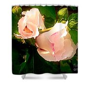 Soft And Pretty Shower Curtain