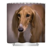 Soft And Silky Shower Curtain