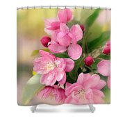 Soft Apple Blossom Shower Curtain